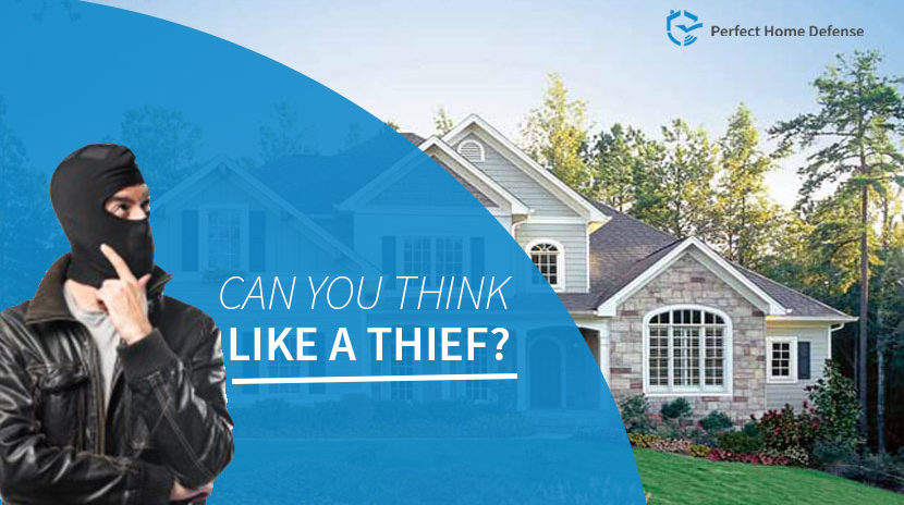 6 Things That Thieves Don't Want You To Know