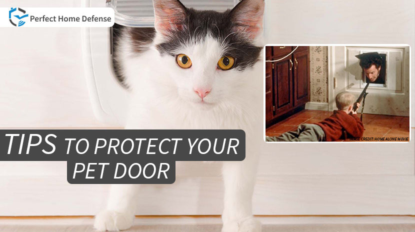 How To Protect Your Home From Pet Door Invaders