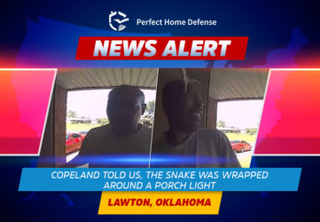 Snake Attacked A Man Caught Live On A Doorbell Camera